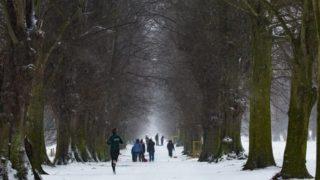 冬の寒い時期でも快適なランニングを!おすすめの防寒ランニングウェア7選