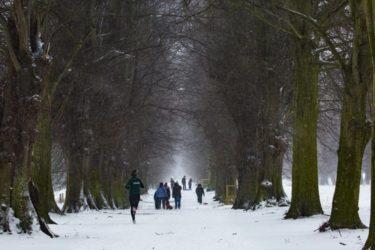 冬の寒さも快適に過ごすためのおすすめランニングウェア7選